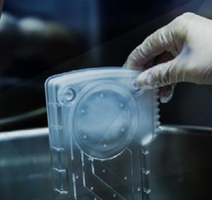 透明化する技術